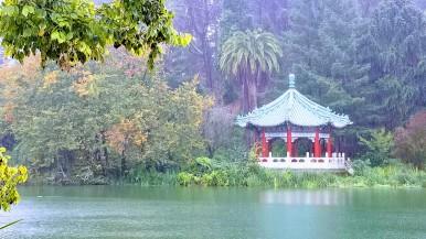 Nearby Japanese garden