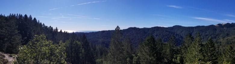 Travel or Else views from Muir Woods