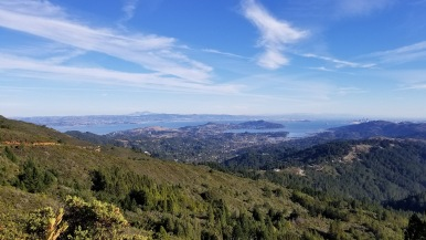 Mount Tamalpais city views