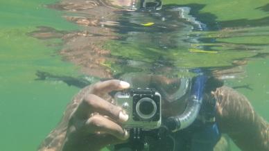Key Biscayne Snorkeling